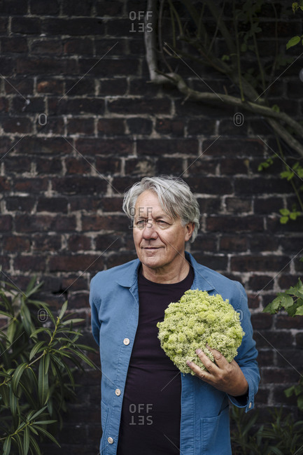 Senior man holding a lettuce head in front of a brick wall