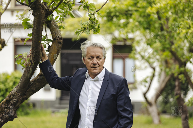 Portrait of senior businessman standing at a tree in a rural garden
