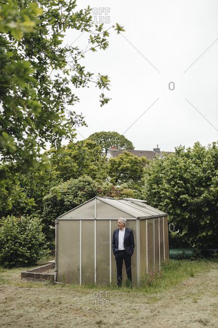 Senior businessman standing at a greenhouse