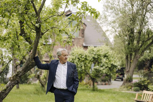 Senior businessman standing at a tree in a rural garden