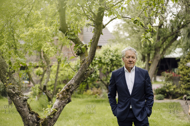 Portrait of a confident senior businessman standing at a tree in a rural garden