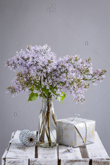 Wrapped gift and bottlewith blooming lilacs