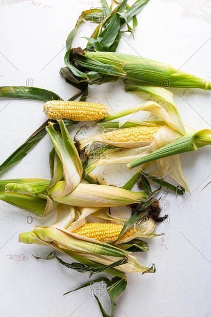 Fresh corn on the cob on white background