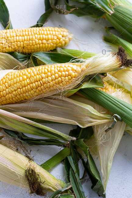 Close up of fresh corn on the cob on white background