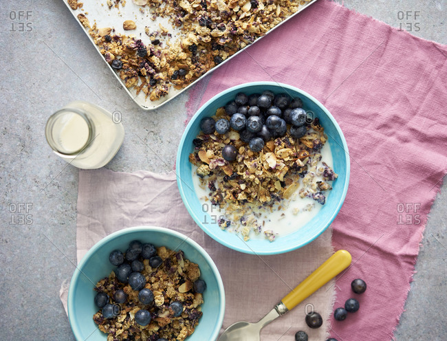 Homemade blueberry granola with fresh blueberries