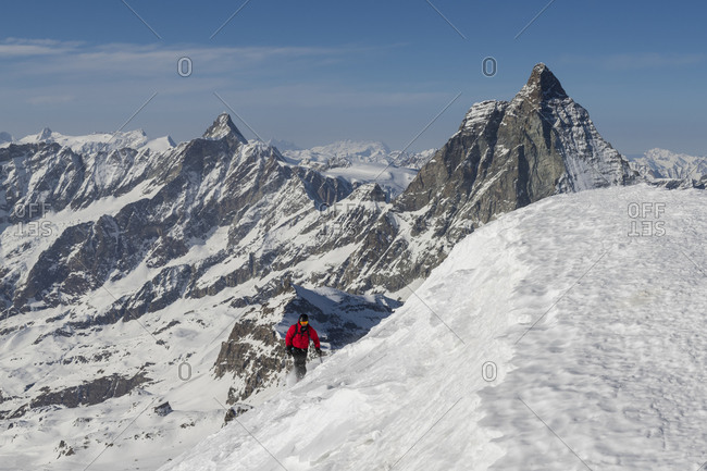Switzerland, Valais, Zermatt, winter ascent, mountaineers reach the summit of Breithorn with Dent d'Herens and Matterhorn in the background