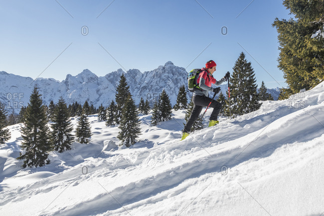 ski mountaineering towards the menegazzi bivouac, area of the croda granda, pale di san martino, agordino, belluno, veneto, italy