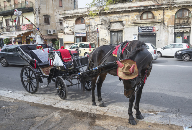 December 11, 2019: Horse drawn carriage taxi, Palermo, Sicily, Italy, Europe,