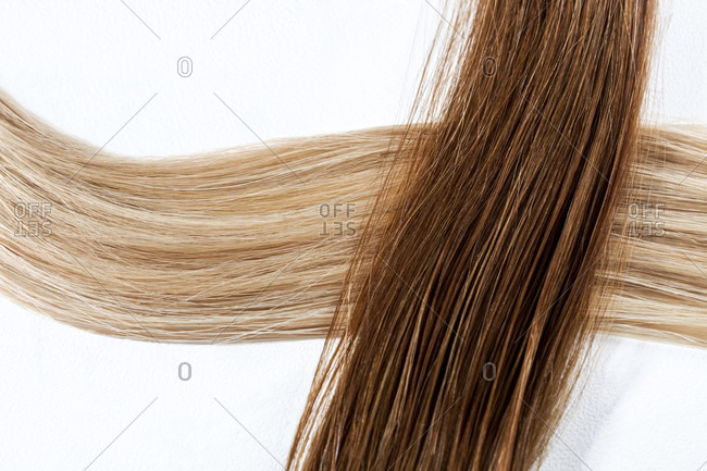 Isolated close up of brunette hair in loose curl