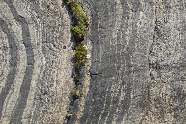 Sweden, OstergOtaland, St. Anna, archipelago, detail rocks