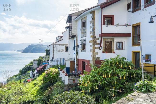 Spain, north coast, Asturias, Lastres, picturesque fishing village, zucchini flowers