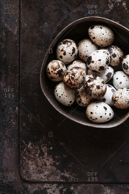 Quail eggs  in a bowl with negative space