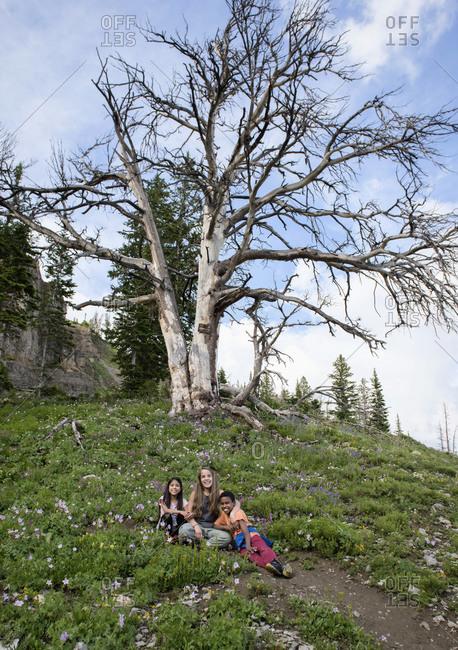 Portrait happy children on hill below tree, Grand Teton National Park, Wyoming, USA