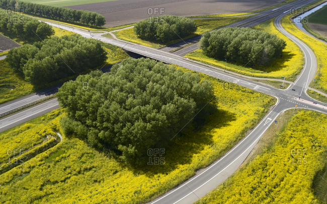 Aerial view of blossoming rapeseed along empty rural road during Corona crisis.