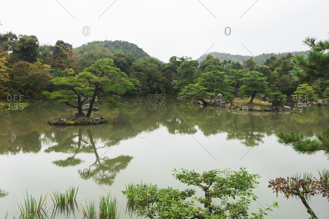 Japanese garden in Golden pavilion temple in Kyoto, Japan