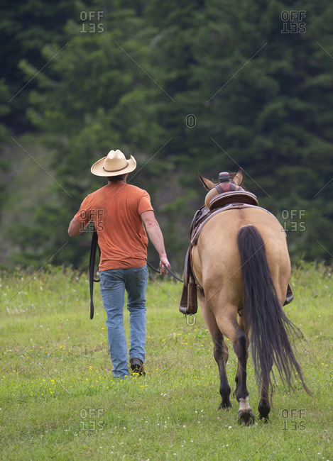 Rancher in a field training a horse