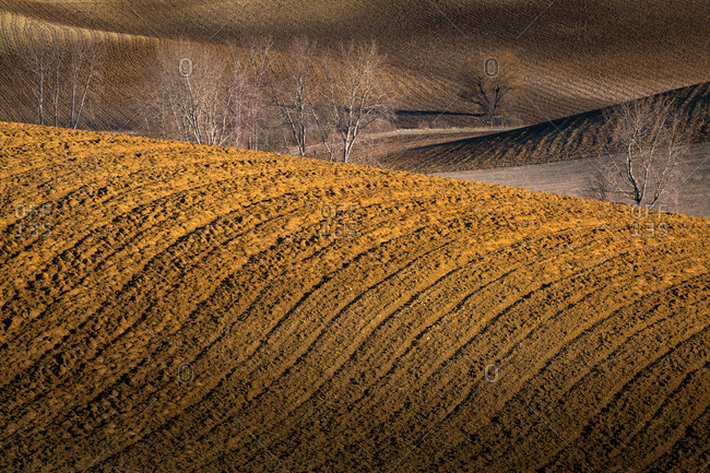 Barren dirt fields in Turiec region, Slovakia.