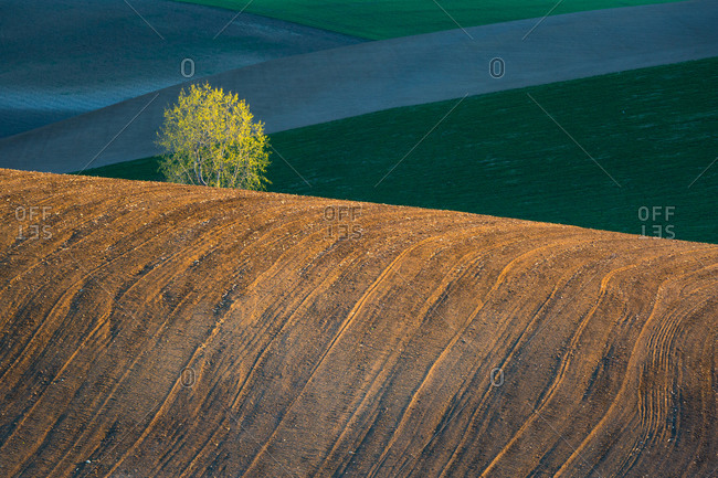 Rolling hills in Turiec region, Slovakia.