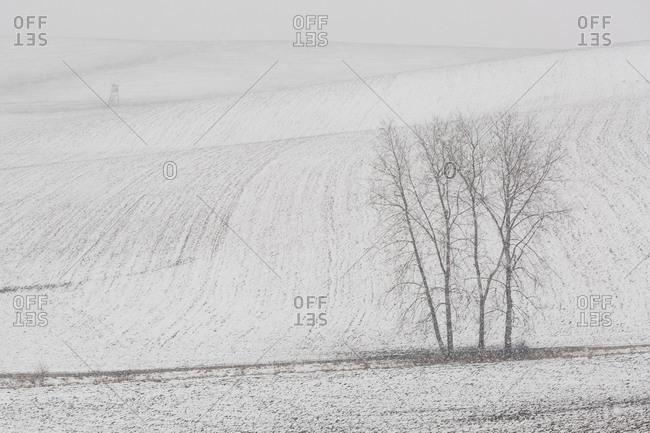 Turiec region, Slovakia in the winter