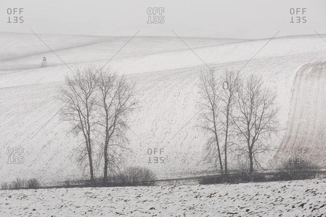 Field in Turiec region, Slovakia in the winter