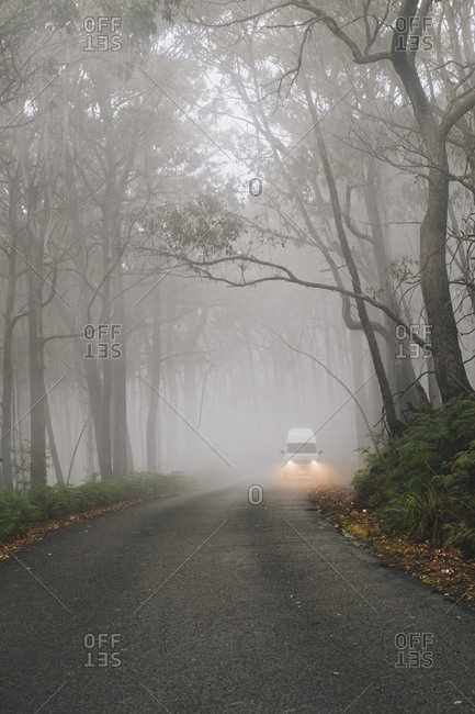 Campervan driving through lush forest on a misty day at the Grampians National Park, Victoria, Australia.