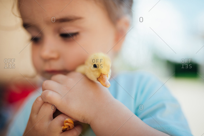 Little girl holding a baby duck.