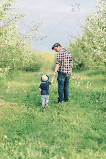 A father and his toddler son walking through a blooming apple orchard