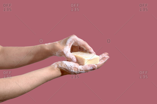 Hands wash hands with soap on a pink background