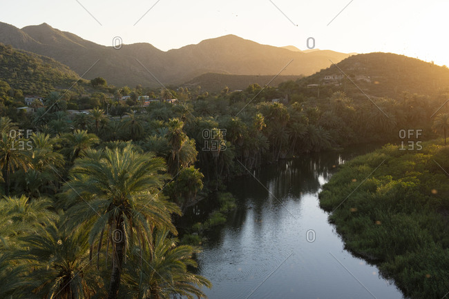 View of an oasis seen from Mulege Mission.