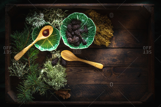 Cedar oil and pine cones on wooden background
