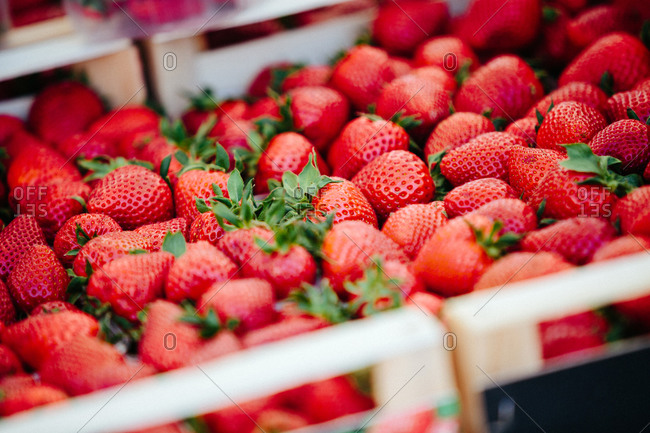 Strawberries at Farmers market