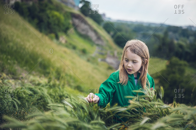 Curious Child Touching Tall Grass on a Hillside in Belgrade, Serbia