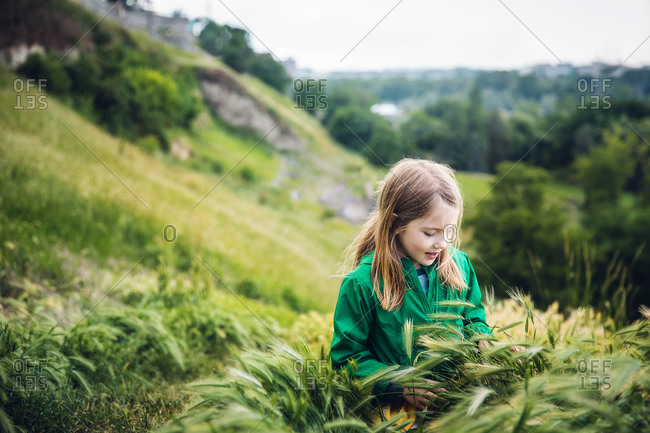 Curious Child in the Tall Grass on a Hillside in Belgrade, Serbia