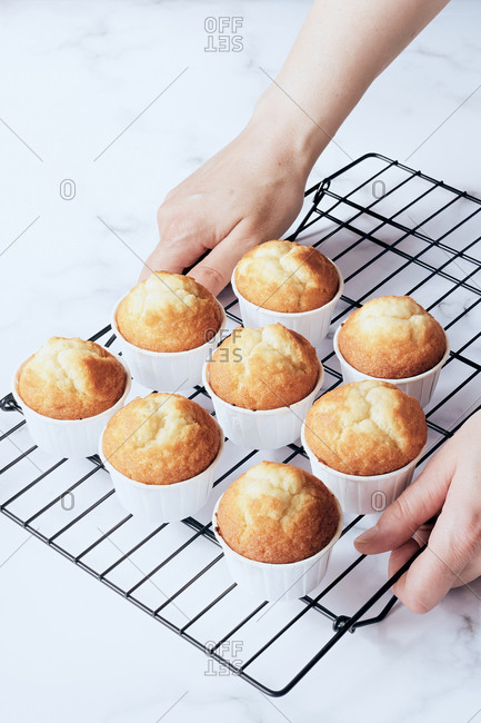 Women's hands holding cooling rack with muffins