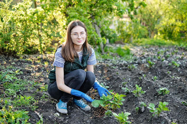 woman works on the ground growing organic plants, fruits and vegetable