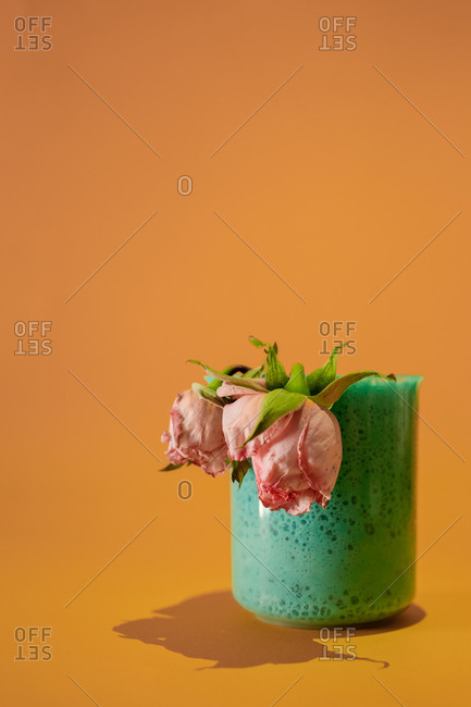 Two wilted roses inside a jar with a turquoise mass on an orange background. Abstract concept