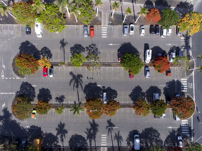 Bird's eye view of cars in the parking lot