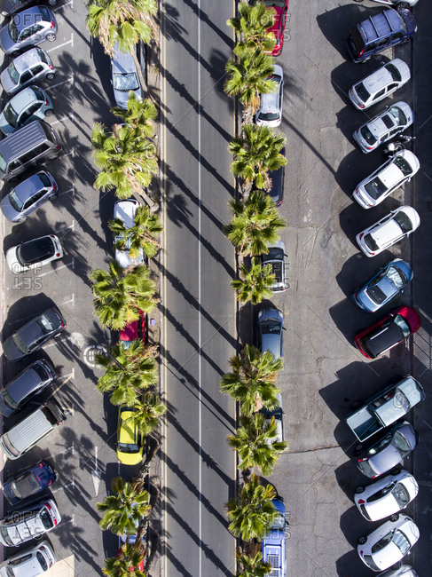 Aerial view of road lined with palm trees beside parked cars