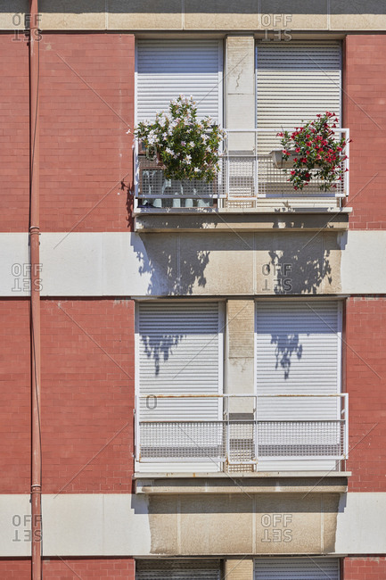 Flowers growing on windowsill of apartments in the Lapa neighborhood in Lisbon, Portugal