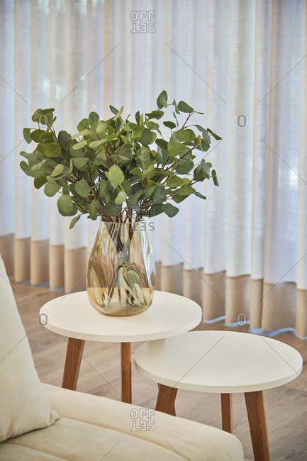 Leafy decorative plant on a nesting table