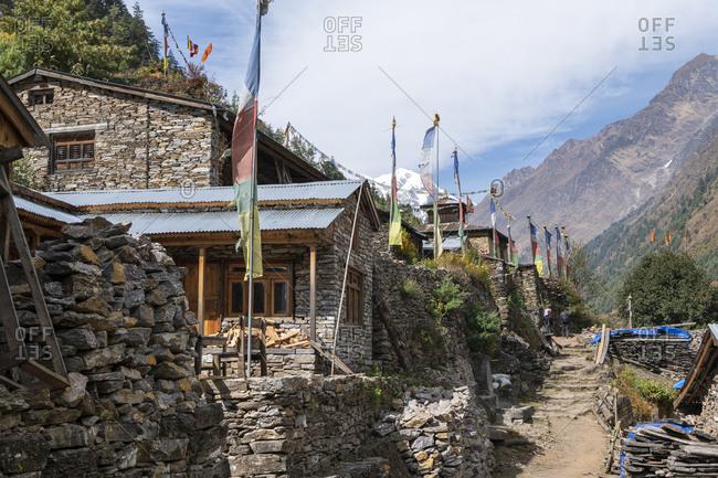 Hike to Samagon, Nepal, Manaslu Circuit
