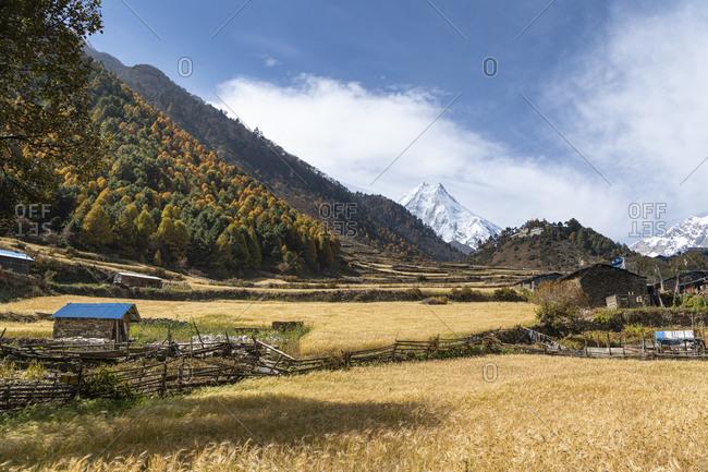 View of the Manaslu and the Ribung Monastery in Lho, Nepal, Manaslu Circuit
