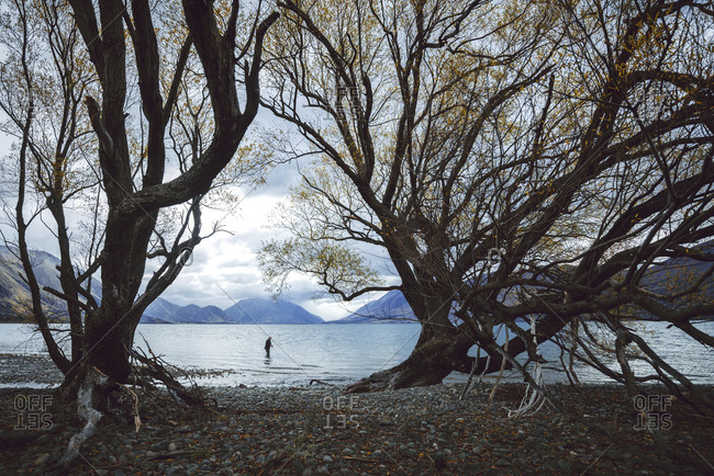 Angler on Lake Ohau framed by two trees with mountains in the background, Lake Ohau, Canterbury, New Zealand