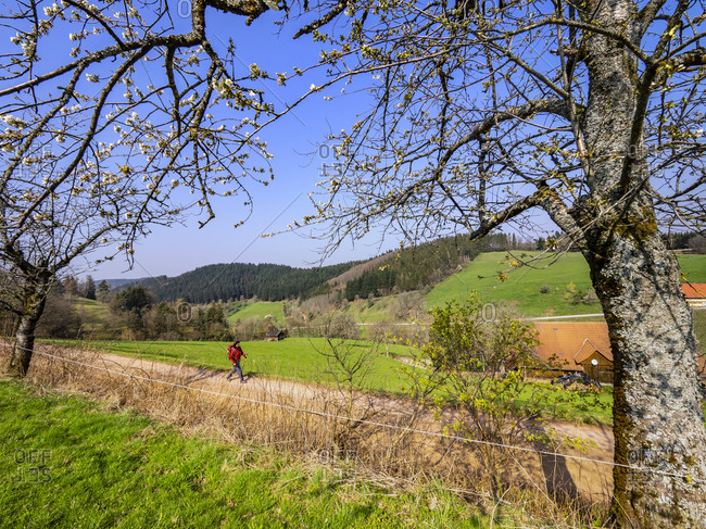 Hiking on the second valley trail, spring mood at the Landwasser corner