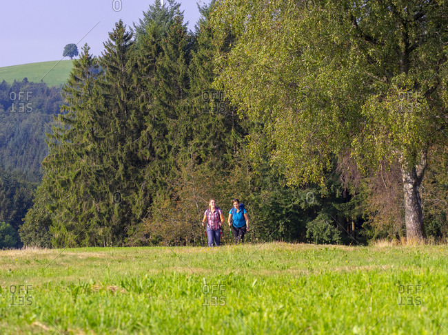 Hiking on the second valley trail, rest on mountain pasture at Kreuzmoos, view towards Bidlstein