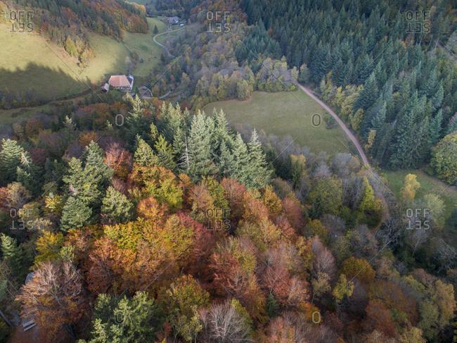Hiking on the Zwealersteig, Elzach-Yach, Siebenfelsen, on the Rohrhardsberg