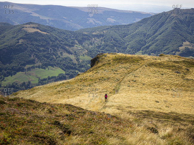 Trekking in the Cantal on the GR 400, volcanic mountains in France, ascent from Mandailles towards Puy Chavaroche.