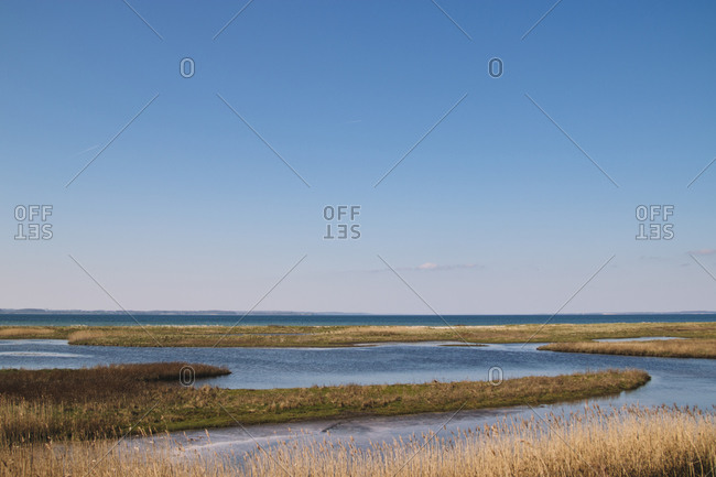 Landscape in the nature reserve Geltinger Birk, Baltic Sea, Schleswig Holstein.