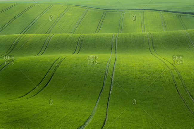 Scenic view of green rolling hills near Kyjov, Hodonin District, South Moravian Region, Moravia, Czech Republic