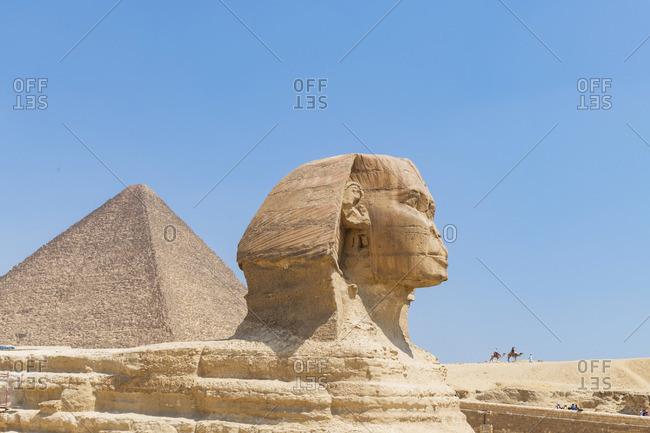 Sphinx head at the Pyramids of Giza, Giza, Cairo, Egypt